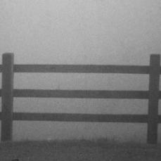 Mailuki Films Fled Lay Fell